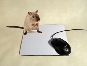 Mouse_Pad_00
