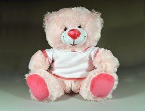 Tedy_Bear_01